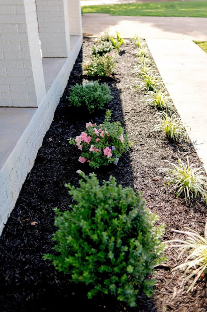 Added landscaping to the facade of your home adds much needed curb appeal!